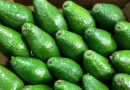 How to choose a delicious ripe avocado and what to make from it