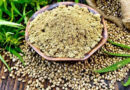 Hemp – on the table! Why is this plant useful and what can be prepared from products based on it